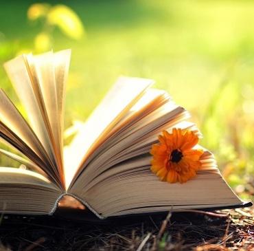 Sélection de livres en français pour l'été